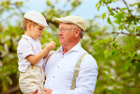 grand child: Cute grandpa with grandson on hands in spring garden Stock Photo