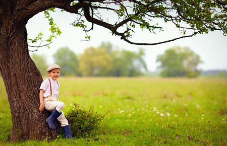 cute little boy under the big blooming pear tree countryside photo