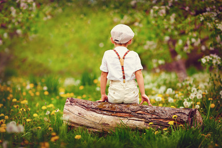 back country: Cute little boy sitting on wooden log in spring garden