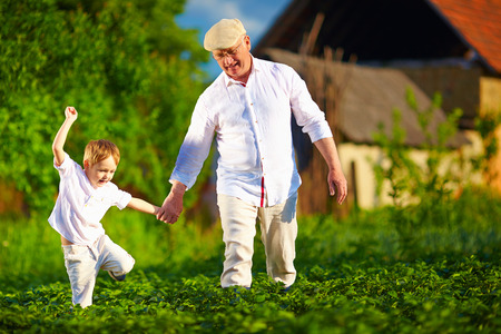 grandsons: Happy grandfather and grandson walking among potato rows at their homestead Stock Photo