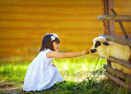 cute girl kid feeding lamb with grass countryside