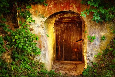숲에서 오래 된 입구 문. 포도주 저장실 스톡 콘텐츠