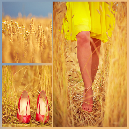collage of beautiful young womans feet on summer wheat field