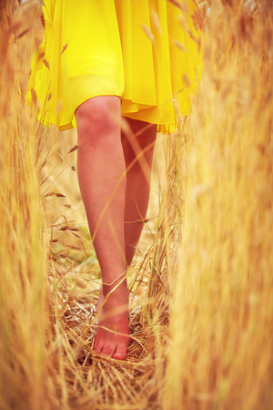 young delicate womans feet walking through summer wheat field