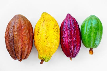 verschillende soorten kleurrijke cacao peulen op wit