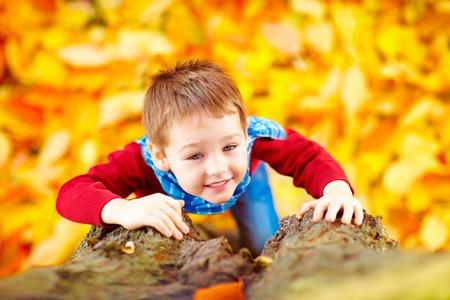 climb: smiling kid, boy climbing a tree in autumn park