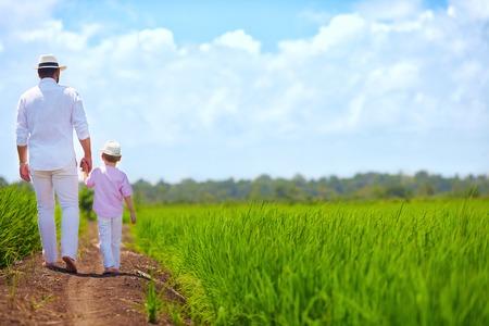 horizonte: padre e hijo descalzo caminando por el campo de arroz Foto de archivo