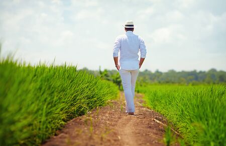 young adult man: young adult man walking away on path through the rice field