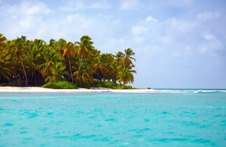 water scape: beautiful tropical coast of caribbean, Saona Island, Dominican Republic Stock Photo