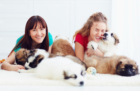 portrait of happy young women and caucasian shepherd puppies dogs