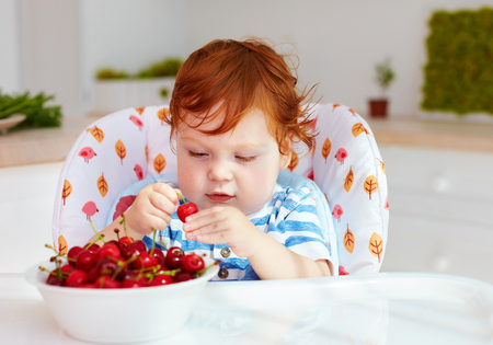 cute redhead infant baby tasting sweet cherries while sitting in highchair on the kitchen Stock Photo