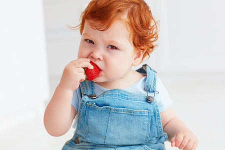 cute ginger toddler baby tasting strawberries
