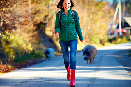 candid funny moment of girl, tourist running away from very friendly pig on the road during the trip