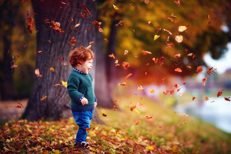 happy toddler baby boy having fun, playing with fallen leaves in autumn park Reklamní fotografie - 88973258
