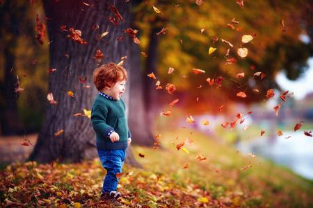 Bebé feliz niño divirtiéndose, jugando con las hojas caídas en el parque otoño