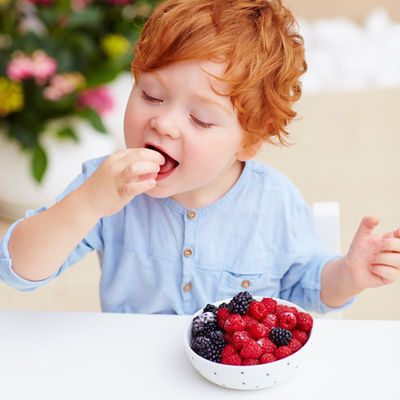 young redhead toddler baby boy tasting the fresh and ripe raspberries and blackberries Stock Photo