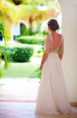 rear view of beautiful girl in lightweight tulle dress with open back Stock fotó