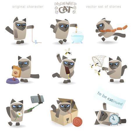 Cool disgruntled tomcat.