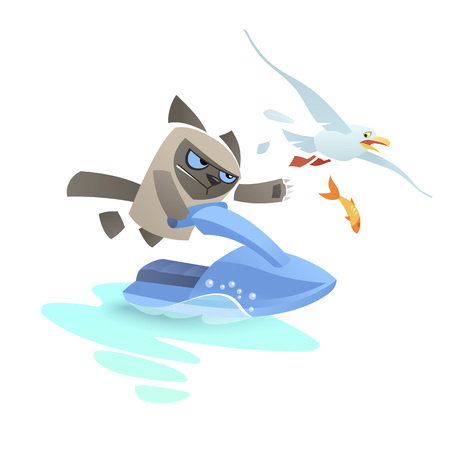 Angry cat on a jet ski pursues a seagull. Grumpy disarmed tomcat. Blue sea scooter glide on a piece of water.