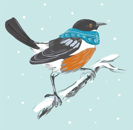 Hand drawn card with colorful bird in snood. Winter time. Vector illustration