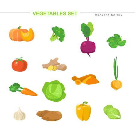 Big set of raw vegetables and roots. Vettoriali