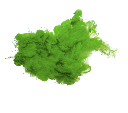 Abstract of green acrylic paint in water.Studio photography on a white background.