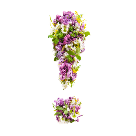 Exclamation mark from natural meadow flowers and lilacs on a white background.