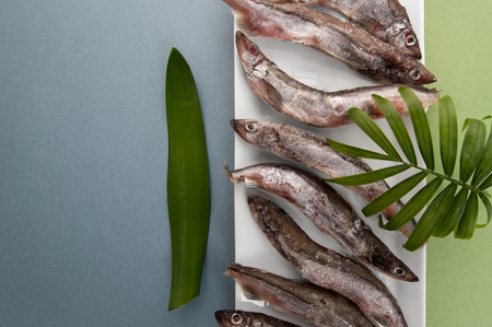 Raw fresh-frozen capelin close-up on a light blue-green background.  Stock Photo