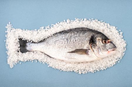 Dorado fish on a large sea salt on a light blue background. Stock Photo