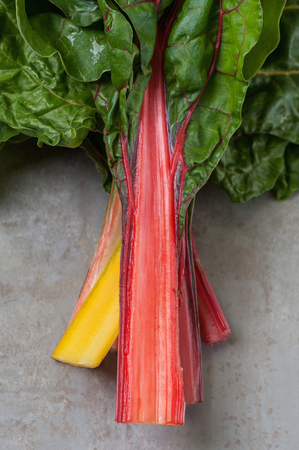 Red and yellow stems of Mangold (salad chard) close-up.