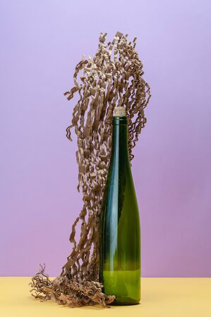 Empty wine bottle and a piece of sliced corrugated cardboard.  Stockfoto