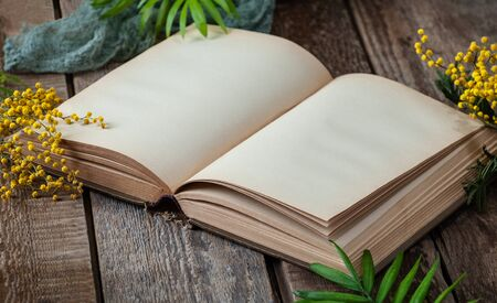 Opened book with blank pages on an old wooden table with mimosa flowers. Horizontal frame. Stockfoto
