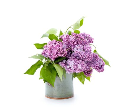 A bouquet of pink lilac in a ceramic vase on a clean white background. Isolated.  Stockfoto