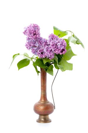 A bouquet of pink lilac in an oriental copper jar on a clean white background. Isolated.