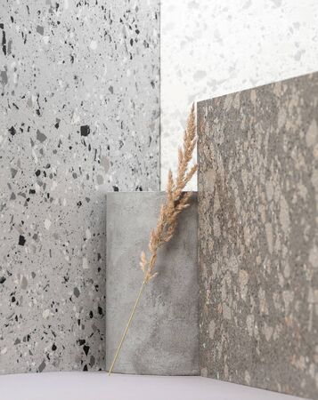 Modern interior composition using various stone textures and dry plants. 版權商用圖片