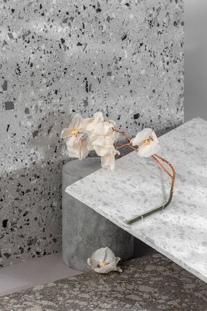 Modern interior composition using various stone textures and a dried flower.