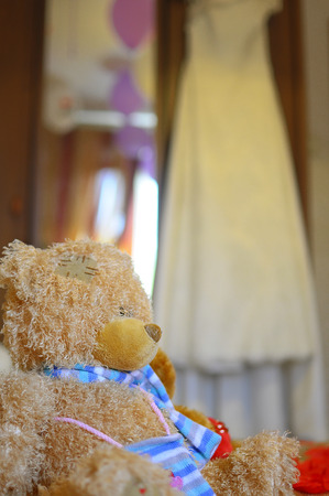 shoestrings: photo Teddy bear toy for children