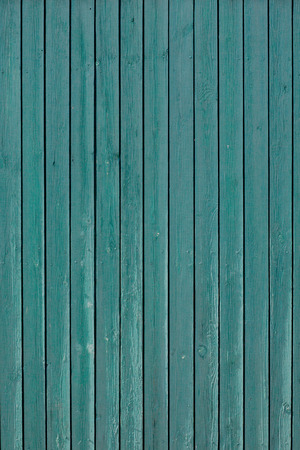 panelling: Natural green wood texture with an array of knots and ring lines.