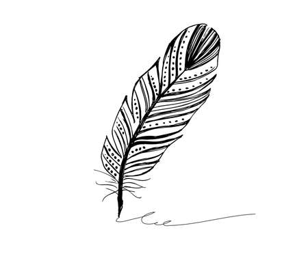 Feather icon set. illustration. Doodle . Vetores