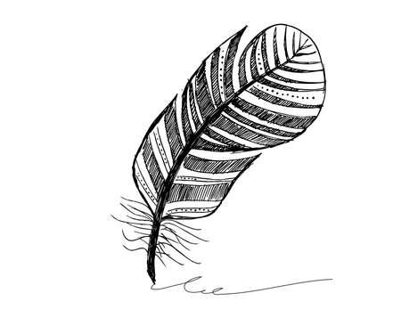 Feather icon set. illustration. Doodle .