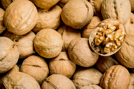 Walnut in shell texture . Top view Imagens