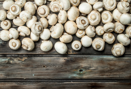 Fresh scented mushrooms. On wooden background