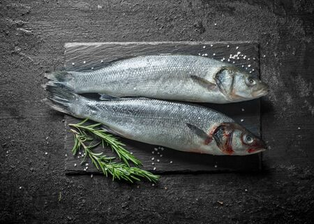 Two fish raw seabass with rosemary. On black rustic background 免版税图像