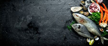 Seafood. Fresh fish, baby octopuses, crab, oysters with garlic, herbs and lime. On black rustic background 写真素材