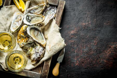 Raw oysters on a rag in a wooden tray with glasses of white wine. On dark rustic background Foto de archivo - 124760624