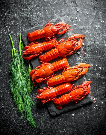 Fragrant boiled crayfish on a stone Board with dill. On dark rustic background