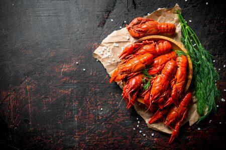 Fragrant boiled crayfish on paper with a bunch of dill. On dark rustic background