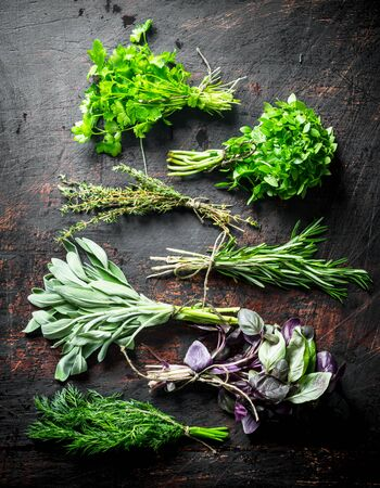 Bunches of fresh herbs for the salad. On dark rustic background 写真素材