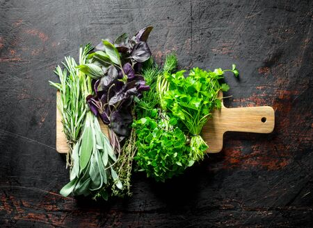 Assortment of different types of herbs for salad. On dark rustic background
