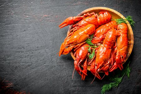 Boiled crayfish on a wooden plate with dill. On dark rustic background